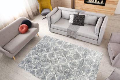gruny dywan koniczyna marokańska